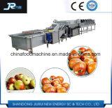 De oppoetsende Machine van de Was van de Productie van de Verwerking van de Jujube van de Classificator