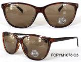 Neue Cp-Sonnenbrillen mit spezielle Farbanstrich-Qualitäts-Polarlicht Eyewear