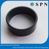 NdFeB Multipole sinterizado para Motor BLDC anel do magneto