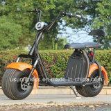 La vespa eléctrica vendedora caliente de la moto de dos ruedas 2018 con quita la batería