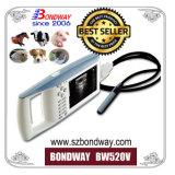 Ecógrafo portátil para el ganado, vaca, de reproducción equina, Ce ISO