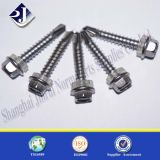 Vite esagonale principale della flangia dell'acciaio inossidabile del prodotto