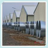 Camera automatica di pollicultura della struttura d'acciaio di Prebab