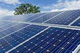 좋은 품질 MP 60 PCS 50W-300W 단청 태양 전지 및 위원회
