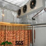 Conservación en cámara frigorífica, congeladora para el alimento fresco