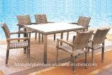 Установленная таблица напольного ротанга обедая (TG-JW58)