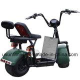 60V 1000Wの電気脂肪質の車輪のタイヤのUsun Harley Citycocoのスクータ
