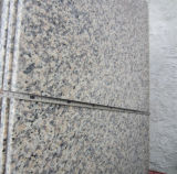 Graniet van het Zinkwit van het Graniet van de Huid van de tijger het Witte