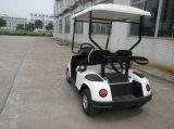 Удобный легковой автомобиль мини-Car 2-местный