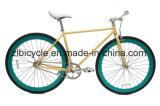 남자 최신 질 Fixie 기어 자전거 Fixie 자전거