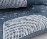 Hot Sale aimant de coton & Cassia rempli oreiller de santé Soins infirmiers à domicile