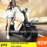 Duas unidades remova a bateria Scooter Eléctrico City Bike com GPS