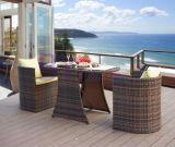 Muebles creativos del hogar de la rota del PE del ocio del balcón de la barra al aire libre del jardín