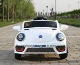 Fahrt 12V auf elektrische Autos mit Fernkind-Spielwaren