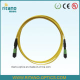 Cabos de correção de programa da fibra óptica da única modalidade MPO/Mpt da alta qualidade 3m