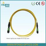 Cuerdas de corrección ópticas agradables de fibra del solo modo MPO/Mpt del precio los 3m