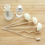 Flor secada vendedora caliente barata de Sola para el difusor de lámina Aromatherapy