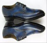 Glanzlederne Brogue-Entwurf Goodyear Borte-Schuhe