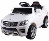 Conduite de benz de Mercedes de gosses sur le véhicule de jouet autorisé