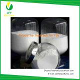 Assassino de dor anestésico local do hidrocloro de Procaine do pó/HCl (engranzamento 10-40)