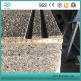 La lastra scura di Padang, G654 ha lucidato la lastra, le mattonelle grige/lastra del granito