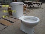 5#-1 separano/toletta di ceramica a due pezzi della stanza da bagno di Washdwon in articoli sanitari