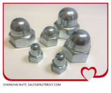 Edelstahl 304 316 Hex Schutzkappen-Abdeckung-Muttern DIN1587 M5
