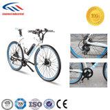환경에 친절한 전기 자전거