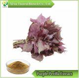 Фиолетовый Perilla извлечения порошок