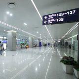 3000K SMD 3528 illumina una striscia flessibile dei 120 LED LED (LM3528-WN120-W)