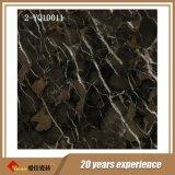 Baldosas de mármol de mejor calidad de productor de diseño 2-Yq10049