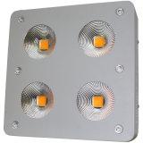 卸し売り600W穂軸LEDはライトを育てる