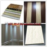 Scheda materiale della decorazione del comitato di parete del PVC della decorazione della parete del rifornimento del fornitore della Cina
