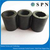 Magnete di ceramica anisotropo del magnete rendimento elevato di ceramica/del magnete di memoria di ferrito