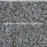 Floor, Wall를 위한 할인 Price Polished 다중 Color Granite Stone Tile