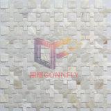 O mosaico branco do escudo para a HOME decora (CFP139)