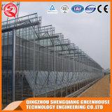 Estufa de vidro do perfil de alumínio do frame de aço da agricultura para o vegetal