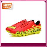 Qualitäts-Fußball-Schuhe für Großverkauf