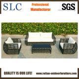 Insiemi del sofà/sofà esterno del giardino del sofà impostato (SC-B8957)