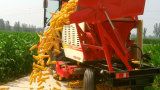 3 ceifeira de liga da ESPIGA de milho das fileiras com função de descascamento