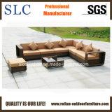 屋外のソファーのセットまたは枝編み細工品のソファーか家具のソファー(SC-B8915)