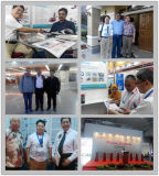 Vmc600L中国の製造業者CNCのフライス盤