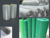 高品質Galvanized Welded Wire Mesh (溶接される)