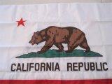 La impresión de pantalla exterior de la bandera estatal de poliéster