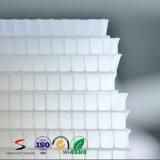 Strato ondulato della scheda vuota trasparente di plastica pp