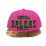 2015 spätestes Design Hiphop Boy Caps mit Leather Rand
