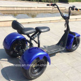 2017 Scooter Triciclo Elétrico Big 3Wheel com Bluetooth