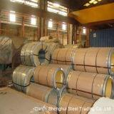 Pente de la meilleure qualité de la bobine DIN 409 d'acier inoxydable de qualité