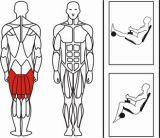 Máquina de fitness gimnasio integrado en la pierna sentado Crul (XH04)