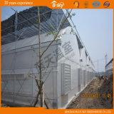 Multi-Span Plastic Film Green House per Seeding